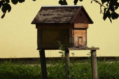 Schulgarten Grundschule Egloffstein